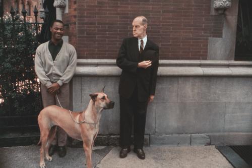 Joel Meyerowitz: Der Straßen-Pionier