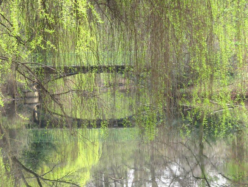 Auf ins Grüne - die schönsten Parks Berlins