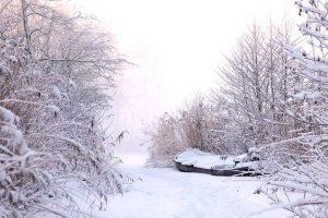 Winterausflüge auf den Teufelsberg.