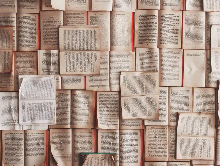 <b>Leseempfehlungen: Buch Neuerscheinungen</b>