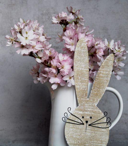 <b>Veranstaltungstipp in der Hauptstadt: Berlin feiert Kirschblütenfest</b>