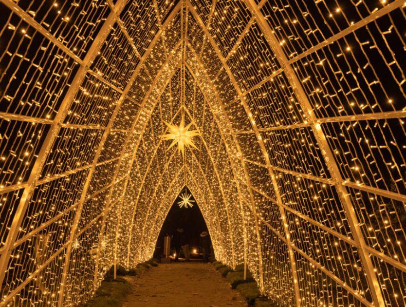 """""""Magisches Funkeln"""" im Christmas Garden Berlin"""
