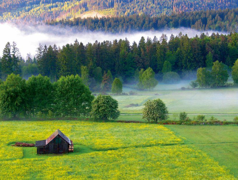 Alltagsstress ade - Im Nördlichen Schwarzwald kommen Körper und Seele zur Ruhe
